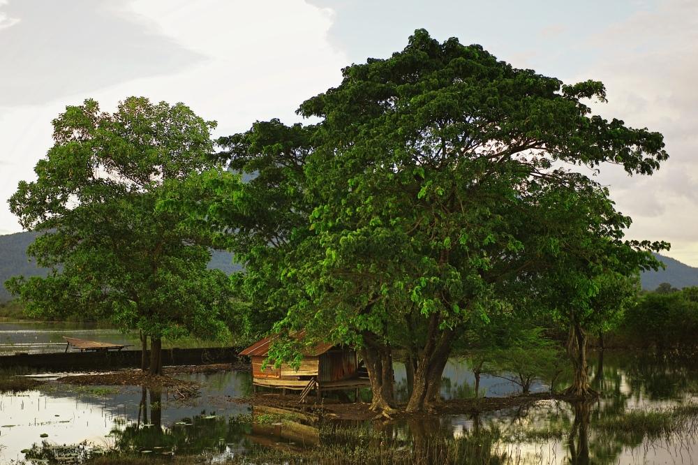 20111212-010136.jpg