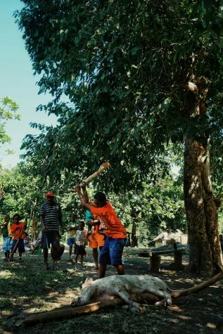 Pig killings at Ambrym Vanuatu